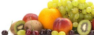 Strava a výživa