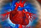 Čo je srdcový infarkt a ako vzniká?
